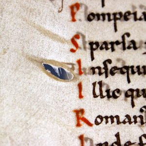 Hole in parchment with hair of animal visible. Leiden University Library, BUR Q.1. Photo credit: Erik Kwakkel.